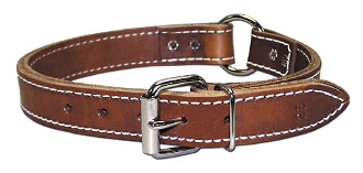RIC Two Ply Leather Collar 1 inch
