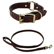 Presentation Snap Lead & Collar Set