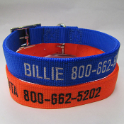 "Embroidered Nylon Dog Collars - 1"" D-Ring"