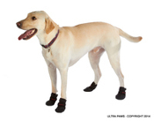 Utra Paws Snow Boots