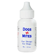 Dogs & Mites
