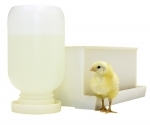Chick Waterer and Feeder